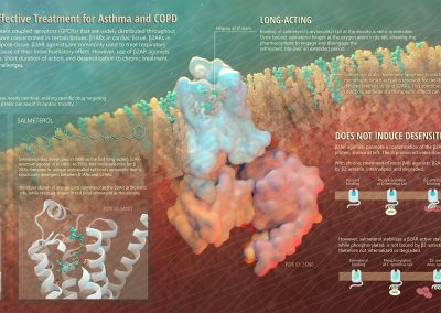 Salmeterol: An Effective Treatment for Asthma and COPD