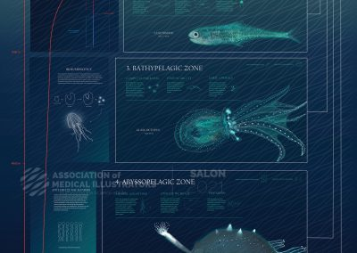 Unveiling the Secrets of the Ocean